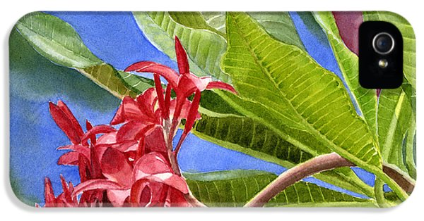Red Plumeria Blossoms With Colorful Background IPhone 5 Case