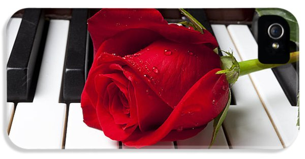 Red Rose On Piano Keys IPhone 5 Case by Garry Gay