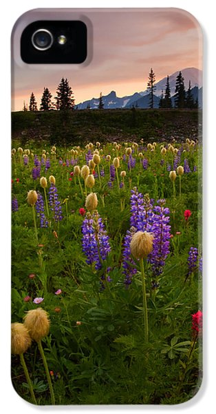 Red Sky Meadow IPhone 5 Case