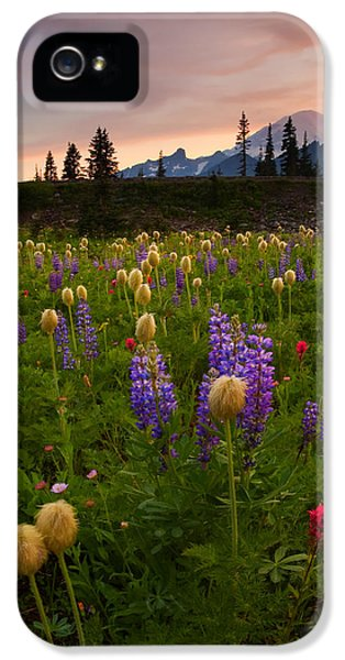 Red Sky Meadow IPhone 5 Case by Mike  Dawson