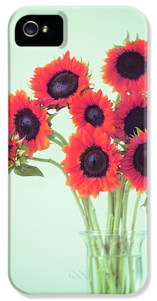 Red Sunflowers IPhone 5 Case by Amy Tyler
