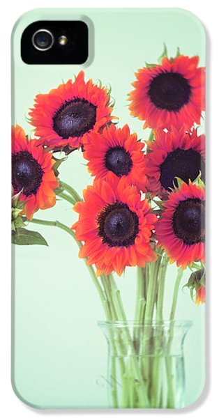 Sunflower iPhone 5 Case - Red Sunflowers by Amy Tyler