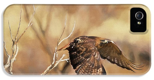 Redtail On The Move IPhone 5 Case by Donna Kennedy