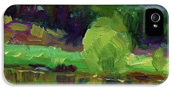 Colorful iPhone 5 Case - Reflections Painting Study By Svetlana by Svetlana Novikova