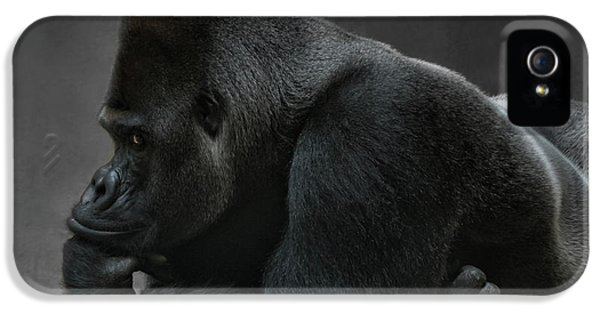Relaxed Silverback IPhone 5 Case