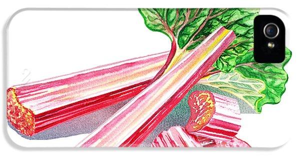 IPhone 5 Case featuring the painting Rhubarb Stalks by Irina Sztukowski