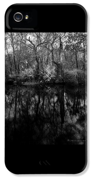 River Bank Palmetto IPhone 5 Case by Marvin Spates