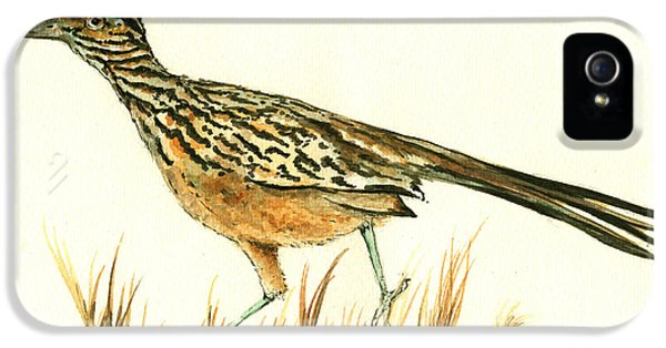 Roadrunner Bird IPhone 5 / 5s Case by Juan Bosco