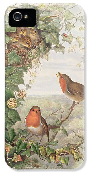 Robin IPhone 5 Case by John Gould