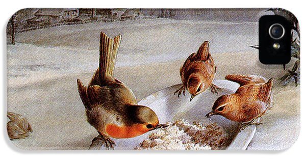 Wren iPhone 5 Case - Robins And Wrens  Winter Breakfast by Harry Bright