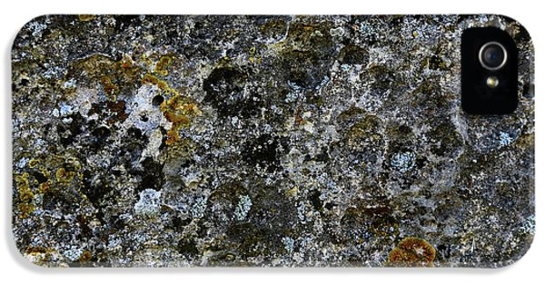 Rock Lichen Surface IPhone 5 Case