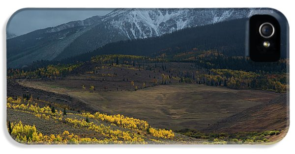 IPhone 5 Case featuring the photograph Rocky Mountain Horses by Aaron Spong