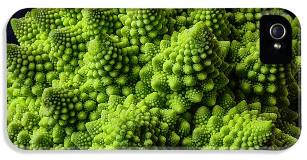 Romanesco Broccoli IPhone 5 Case by Garry Gay