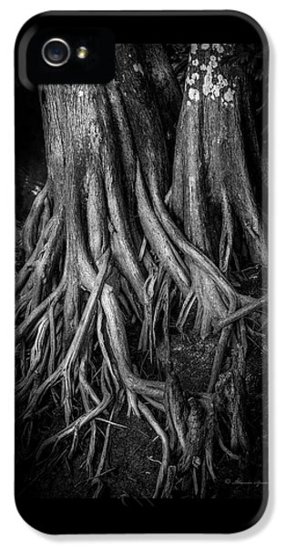 Roots IPhone 5 Case