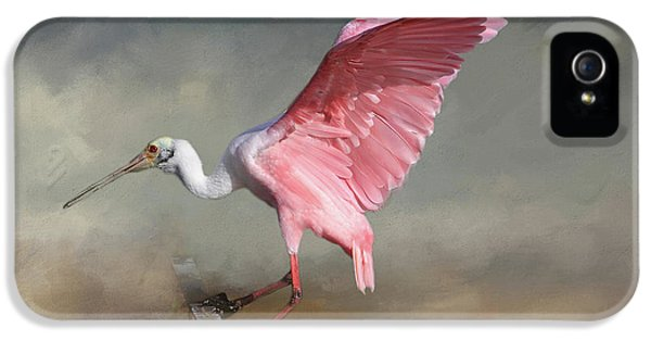 Ibis iPhone 5 Case - Rosy by Donna Kennedy