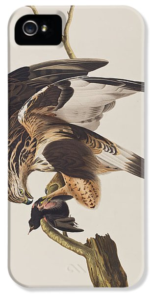 Rough Legged Falcon IPhone 5 / 5s Case by John James Audubon
