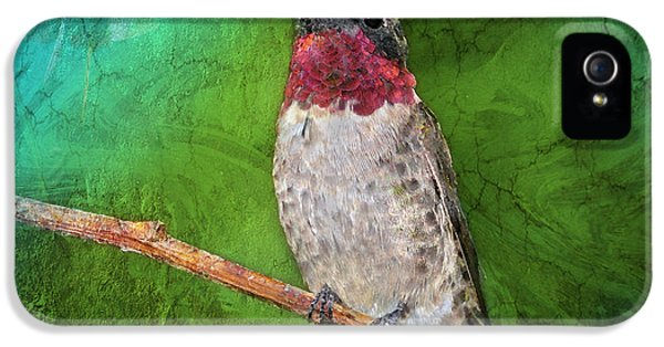 Ruby Throated Hummingbird IPhone 5 Case by Betty LaRue