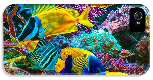 Saltwater Fish Collection IPhone 5 / 5s Case by Marvin Blaine