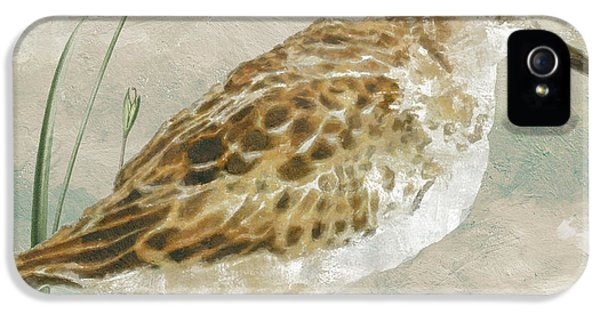 Sandpiper I IPhone 5 / 5s Case by Mindy Sommers