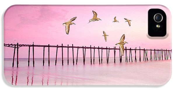Sandpiper iPhone 5 Case - Sandpiper Sunset by Laura D Young