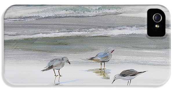 Sandpipers IPhone 5 Case