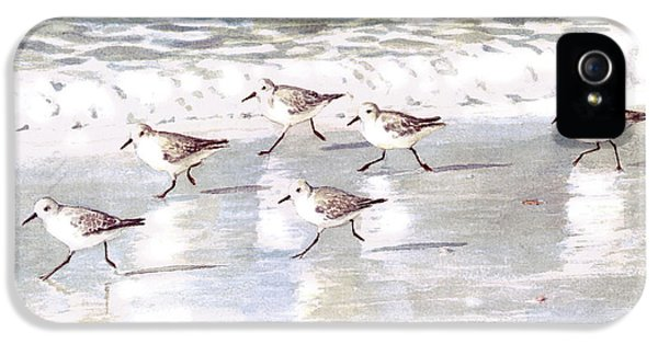 Sandpipers On Siesta Key IPhone 5 Case