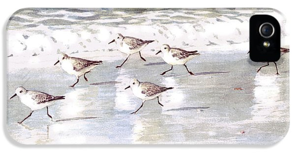 Sandpipers On Siesta Key IPhone 5 Case by Shawn McLoughlin