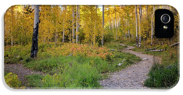 Santa Fe National Forest Aspen 1 - New Mexico IPhone 5 Case