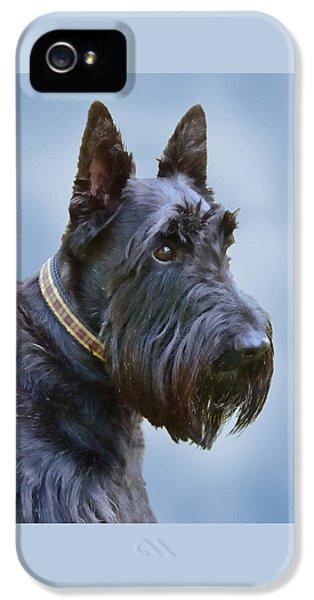 Scottish Terrier Dog IPhone 5 Case