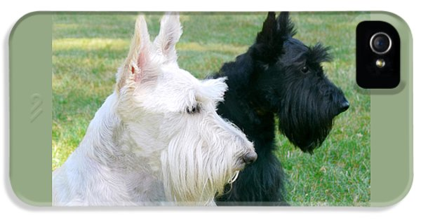 Scottish Terrier Dogs IPhone 5 Case