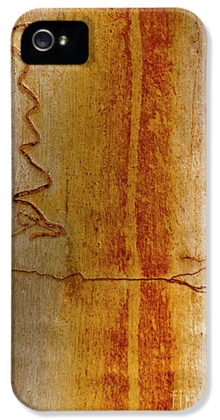 IPhone 5 Case featuring the photograph Scribbly Gum Bark by Werner Padarin