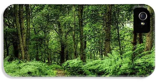 Seeswood, Nuneaton IPhone 5 Case by John Edwards