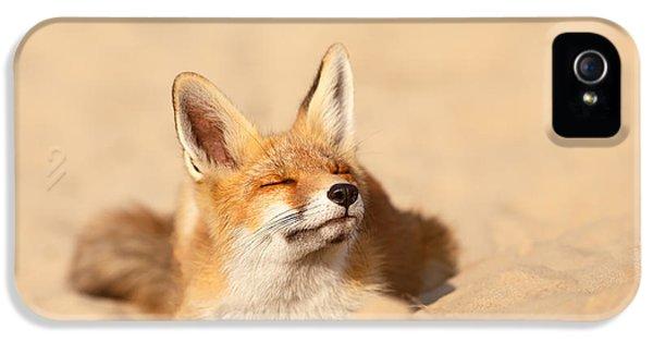 Zen Fox Series - Sandy Paws IPhone 5 Case