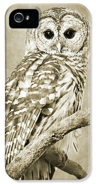 Sepia Owl IPhone 5 Case