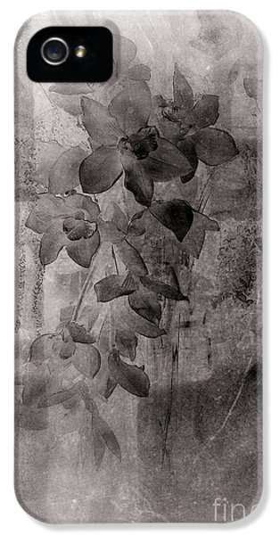Serenade IPhone 5 Case by Susanne Van Hulst