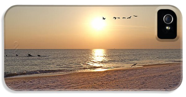 Shackleford Banks Sunset IPhone 5 Case by Betsy Knapp