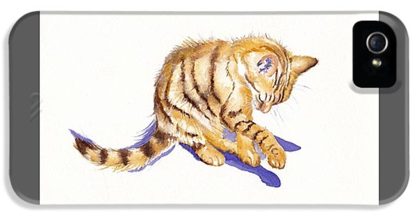 Cat iPhone 5 Case - Shadow Boxing by Debra Hall