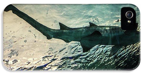 Shark Fins IPhone 5 Case by Martin Newman