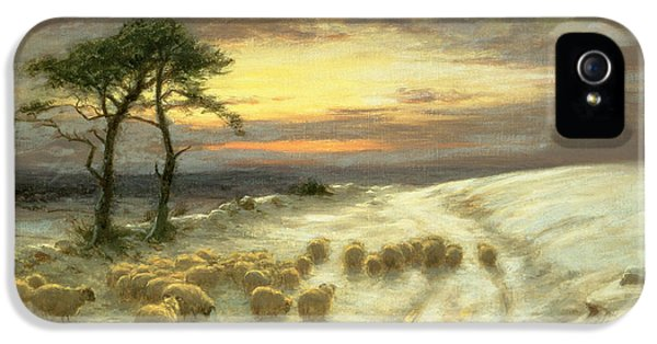 Sheep In The Snow IPhone 5 Case by Joseph Farquharson