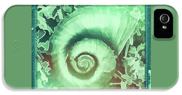 Shell Series 2 IPhone 5 Case by Marvin Spates