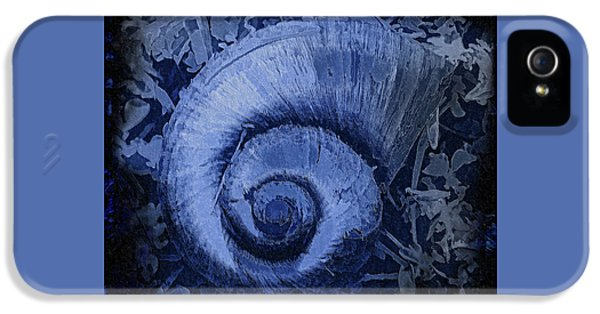 Shell Series 3 IPhone 5 Case by Marvin Spates