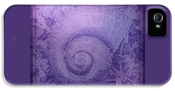 Shell Series 5 IPhone 5 Case by Marvin Spates