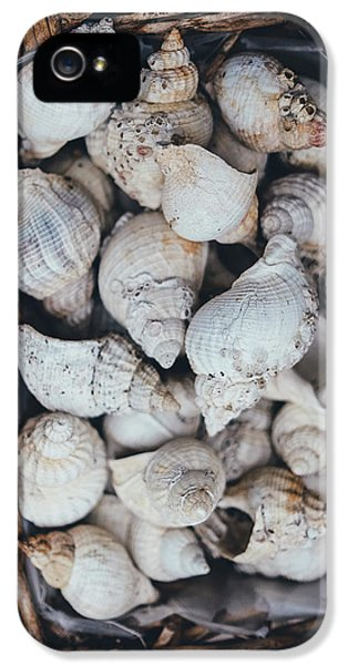 Shells IPhone 5 Case