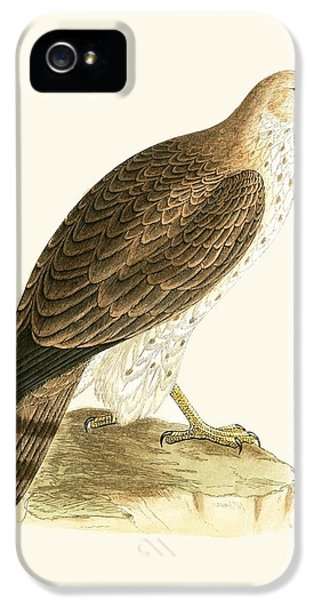 Short Toed Eagle IPhone 5 / 5s Case by English School