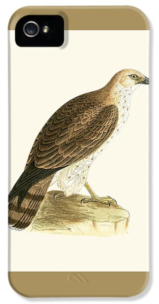 Short Toed Eagle IPhone 5 Case by English School