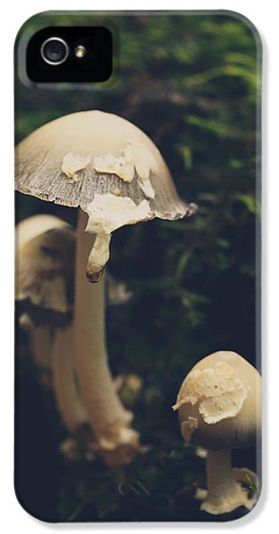 Shroom Family IPhone 5 Case by Shane Holsclaw