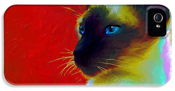 Siamese Cat 10 Painting IPhone 5 Case