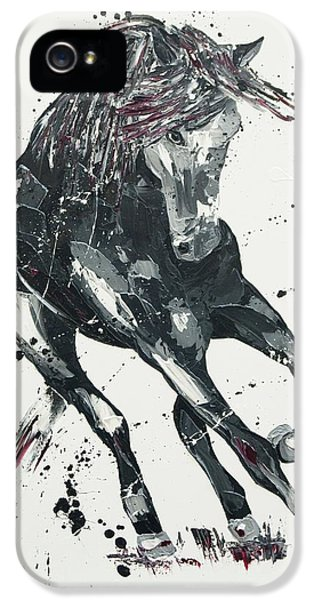 Significance IPhone 5 Case