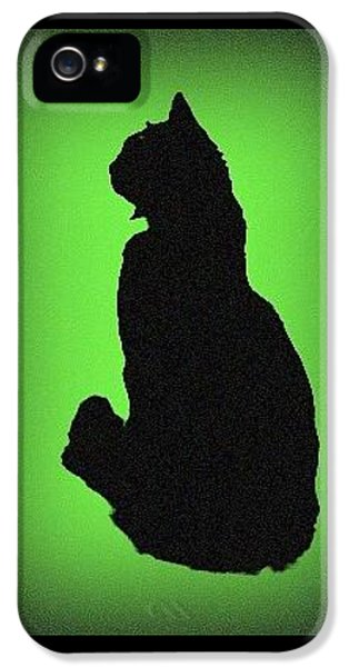 IPhone 5 Case featuring the photograph Silhouette by Karen Shackles