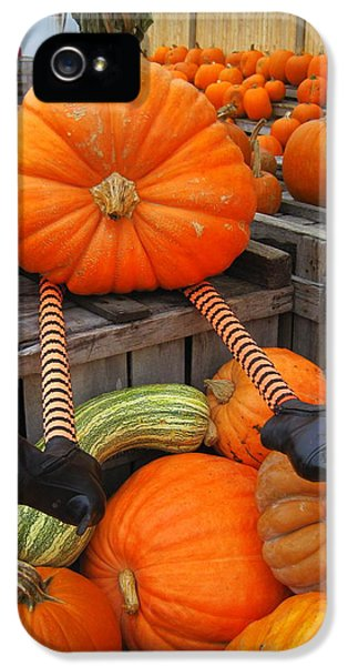 Silly Pumpkin IPhone 5 Case by Suzanne DeGeorge